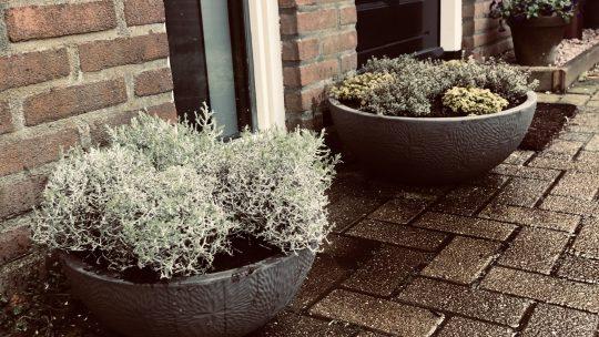 Parelmoervaas.nl; Bloempotten, vazen, plantenbakken en grote potterie
